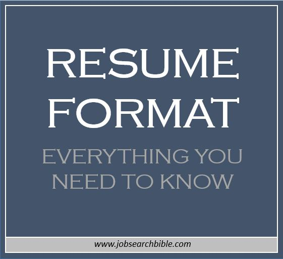 resume format everything you need to know job search bible